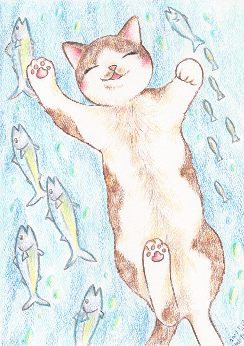 サカナと泳ぐ猫