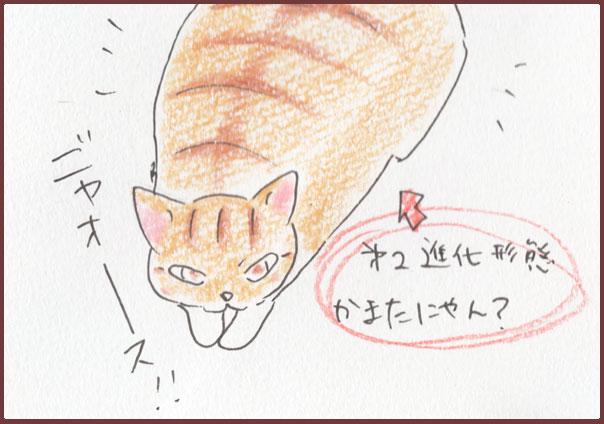蒲田にゃん8