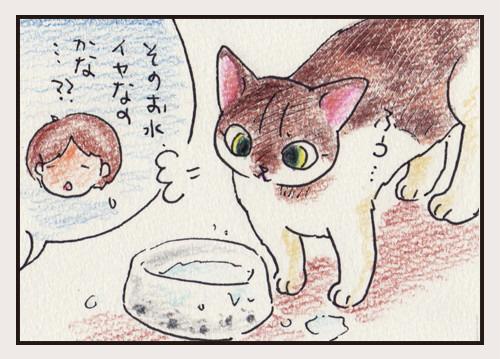 水飲みの儀式